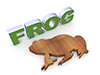 Frog|フロッグ